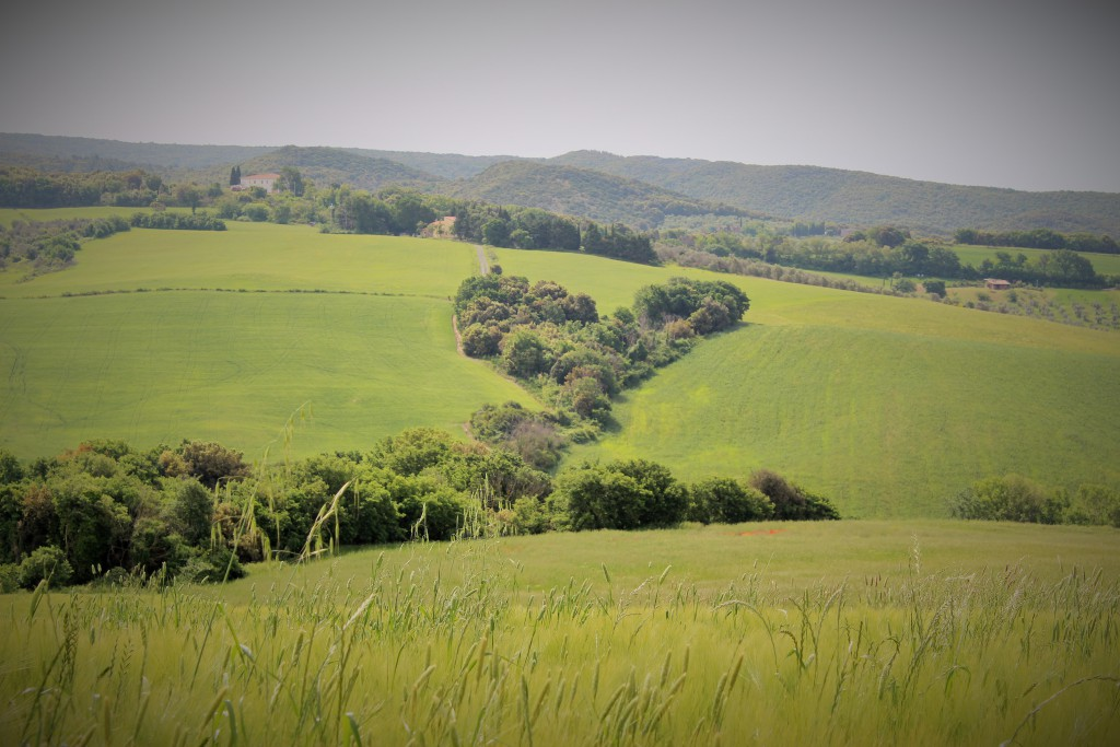 reichle visionssuche landschaft