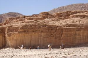 wüste4